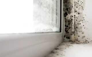 Причины запотевания пластиковых окон и способы устранения проблемы