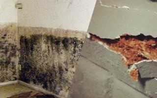 Как гидроизолировать подвал: материалы, смеси, способы выполнения работ
