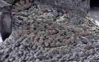 Виды, названия и классификация бетонных смесей
